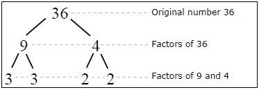 Factor tree of 48