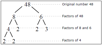 Factor tree of 48