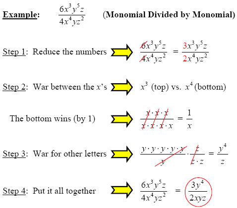Make Polynomial Division Simple with these Steps from GradeA